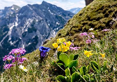 Tiroli túrák 5 napon keresztül